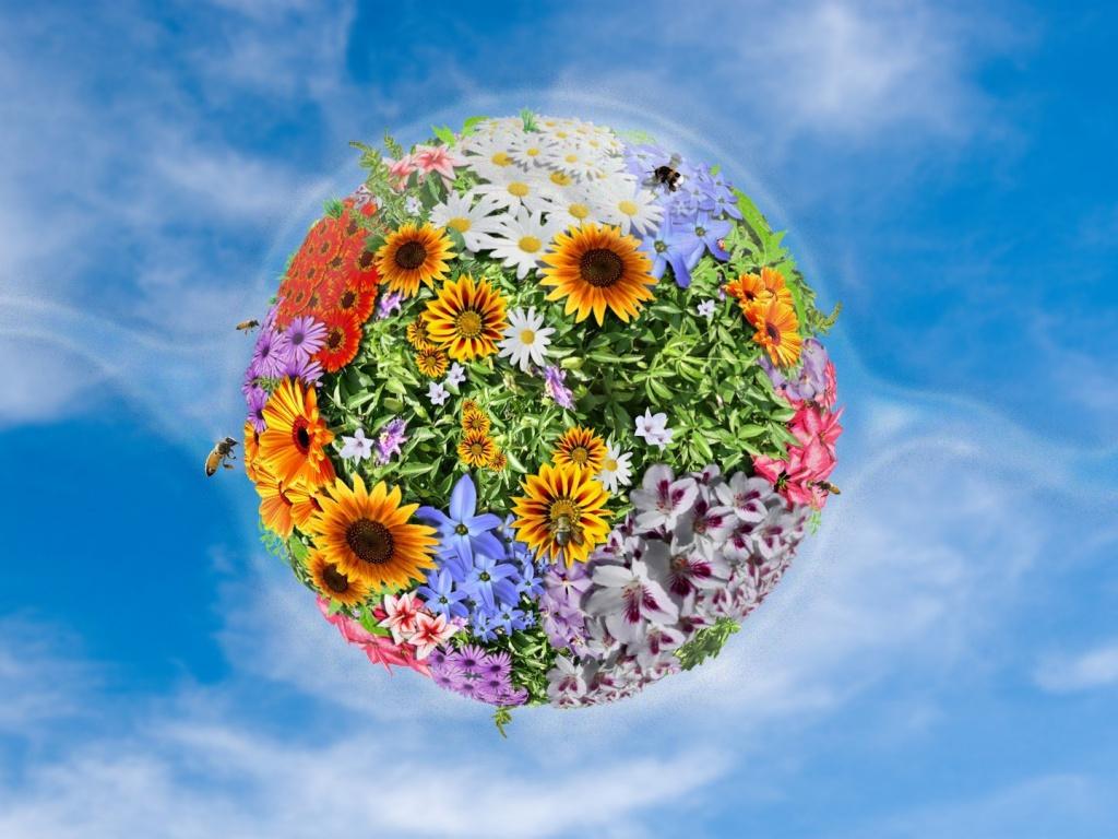 Рисунок планета цветок