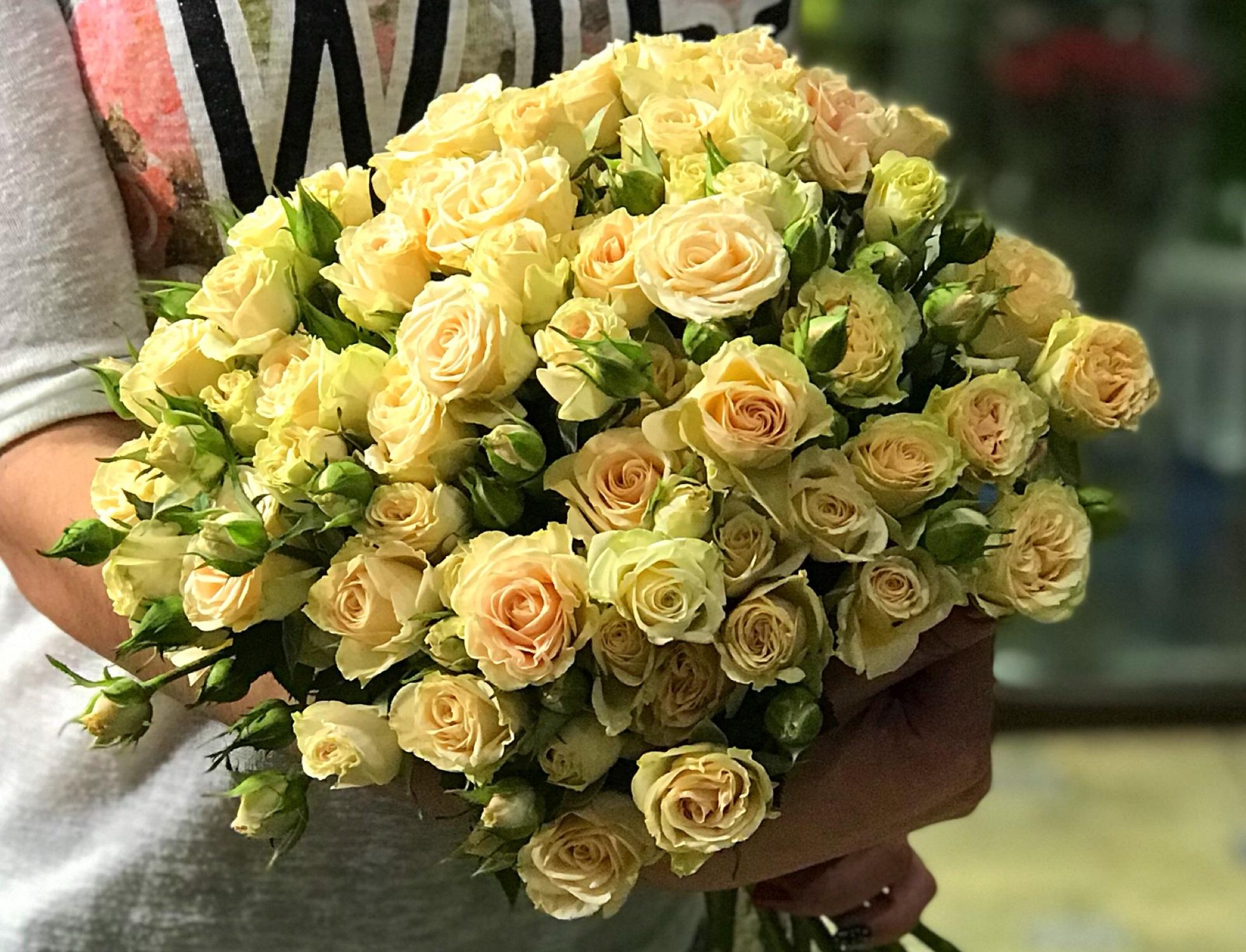 Что делать, чтобы розы дольше стояли: как сохранить розы в 37