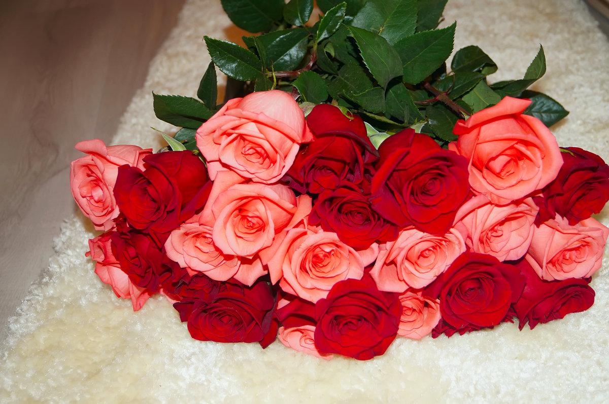 фото букетов роз для загрузки подойдет
